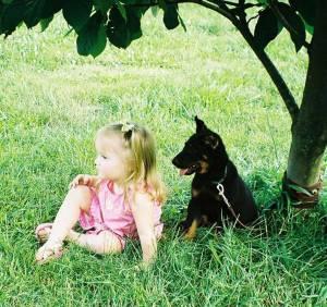 Our Puppies Mes Yeux Vigilants Beaucerons